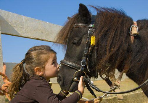 enfant-equitation